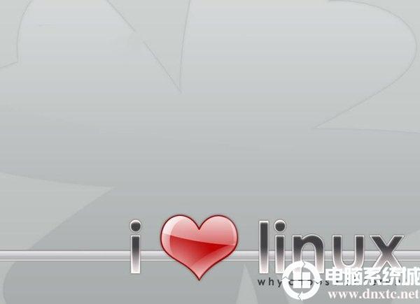 在Linux上安裝配置netpas遊戲加速器解決方法
